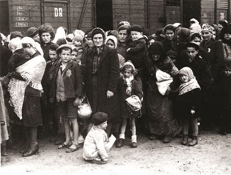 Auschwitz Extermination Camp 1964